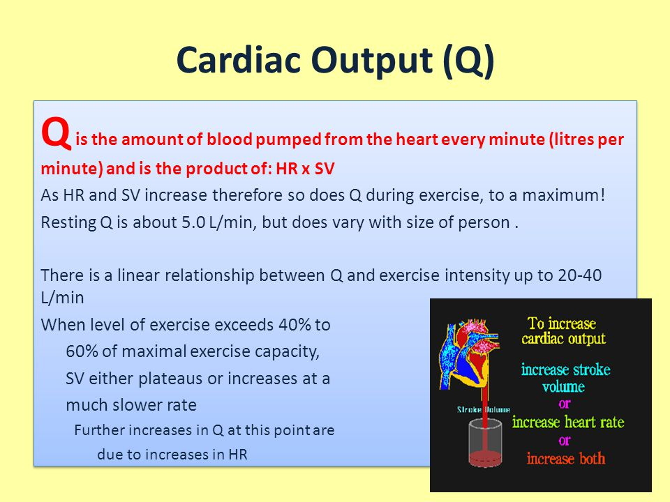Cardiac Output (Q) Q is the amount of blood pumped from the heart every minute (litres per minute) and is the product of: HR x SV.