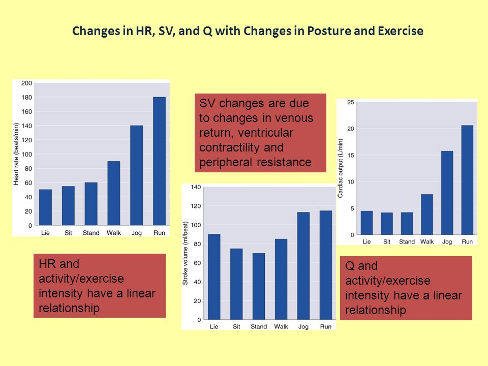 Changes in HR, SV, and Q with Changes in Posture and Exercise