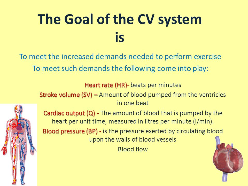 The Goal of the CV system is