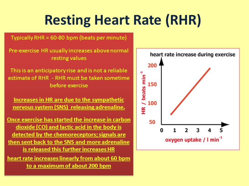 relationship between resting heart rate and exercise