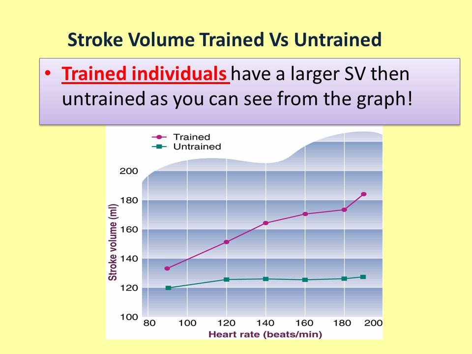 Stroke Volume Trained Vs Untrained