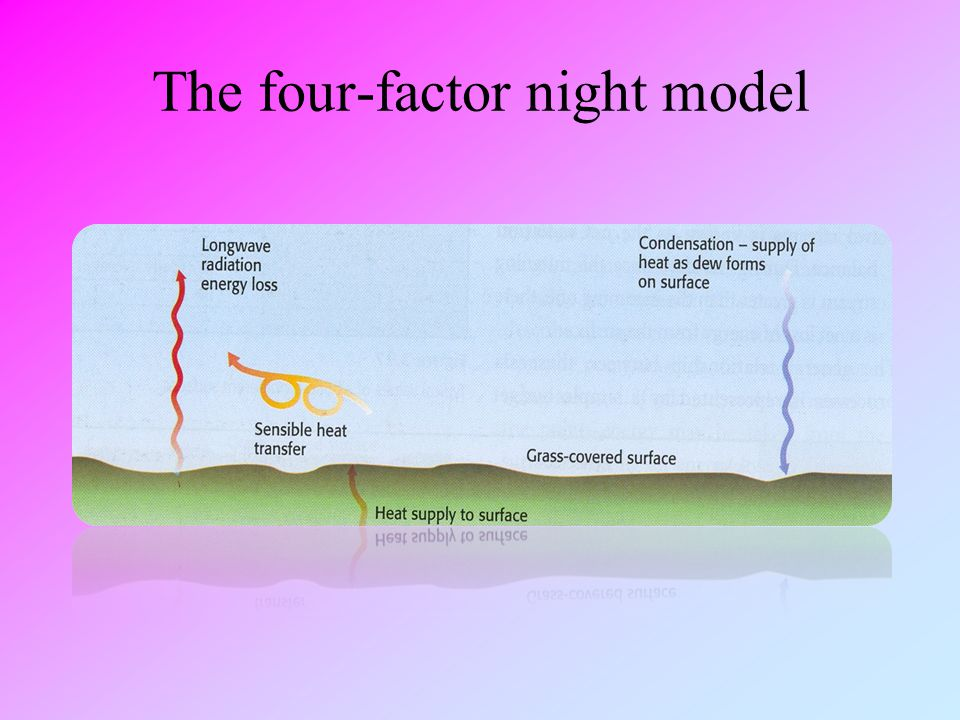The four-factor night model