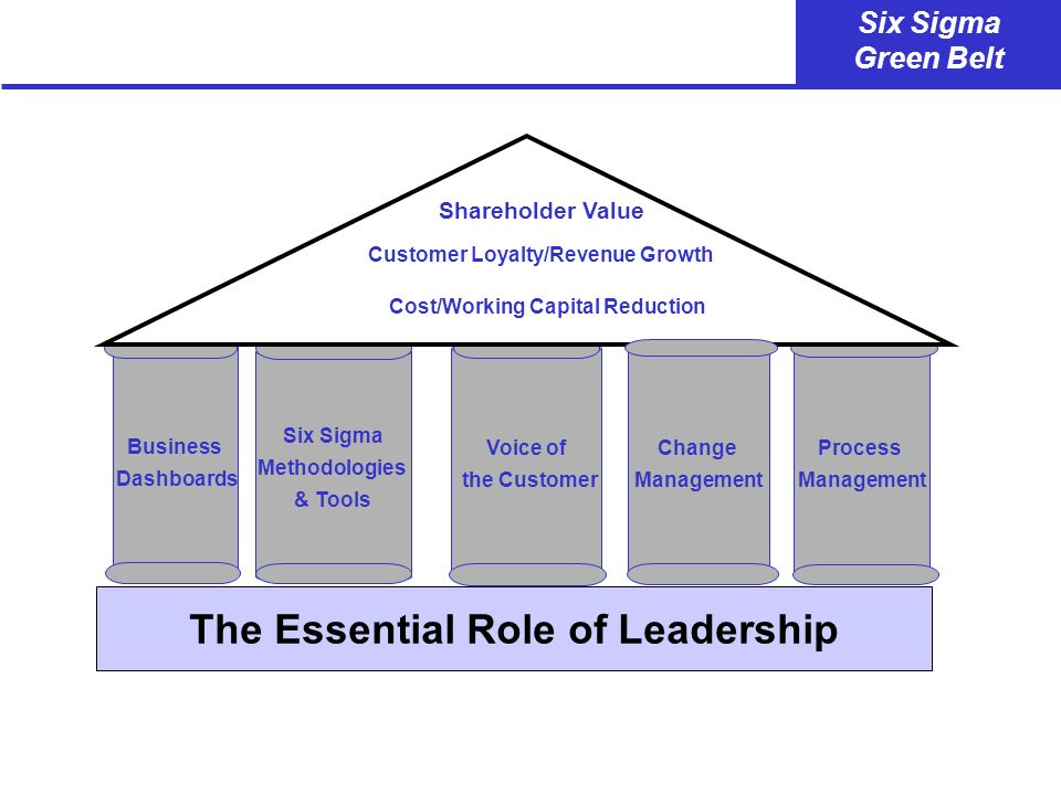 The Essential Role of Leadership