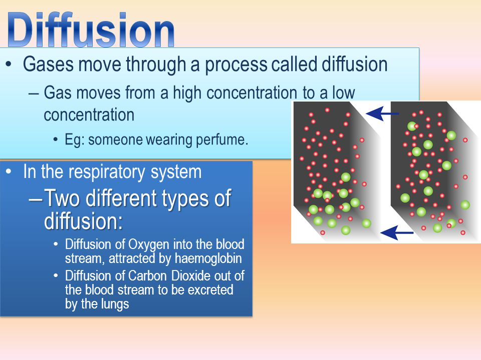 Diffusion Two different types of diffusion: