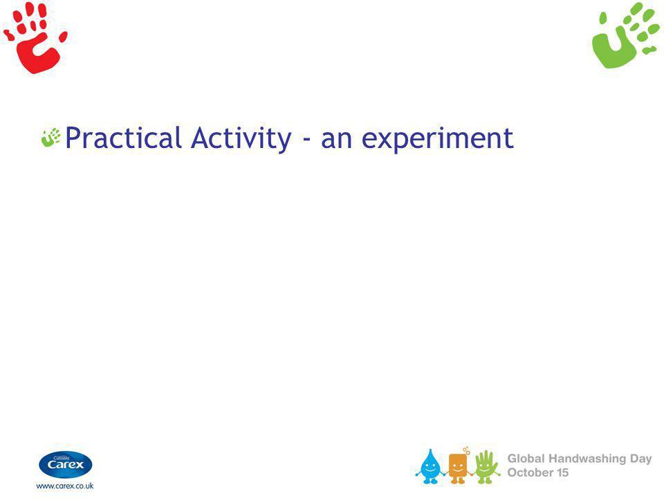 Practical Activity - an experiment
