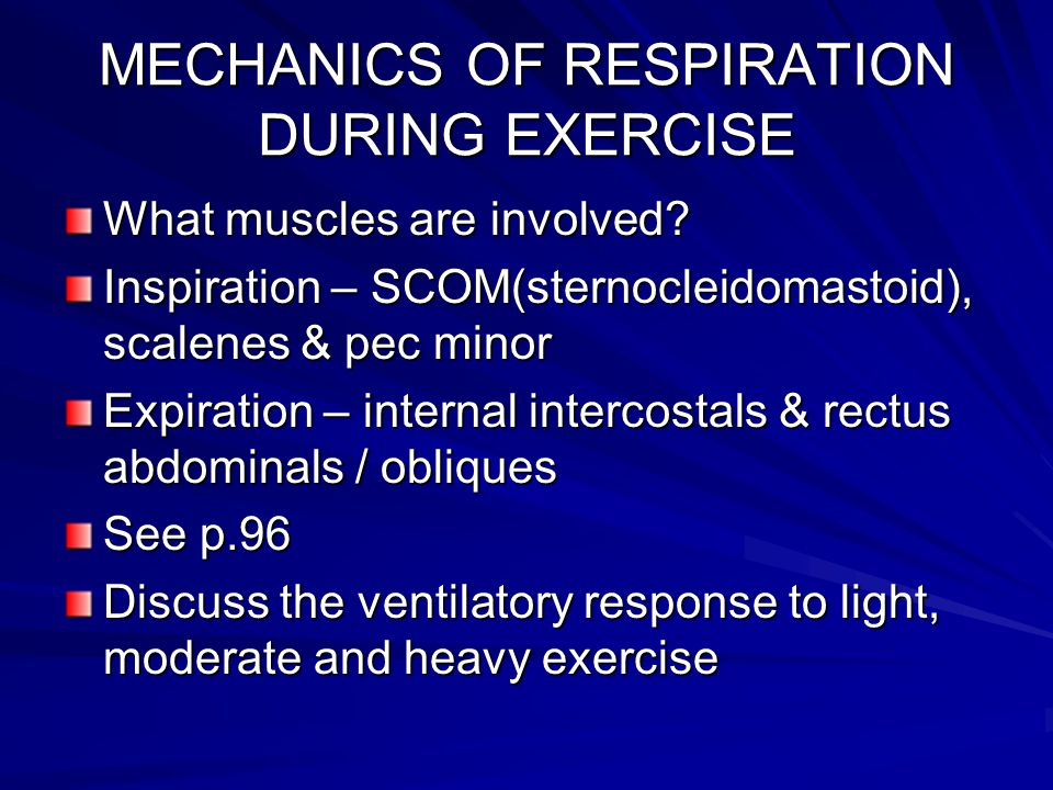 As Level Pe Respiratory System Ppt Video Online Download