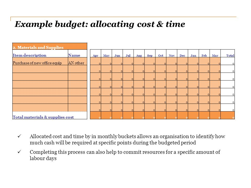 Example budget: allocating cost & time