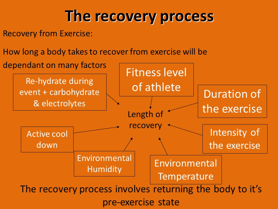 The recovery process Fitness level of athlete Duration of the exercise