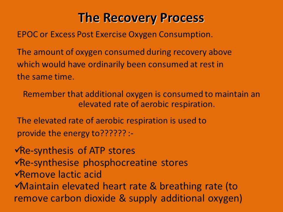The Recovery Process Re-synthesis of ATP stores