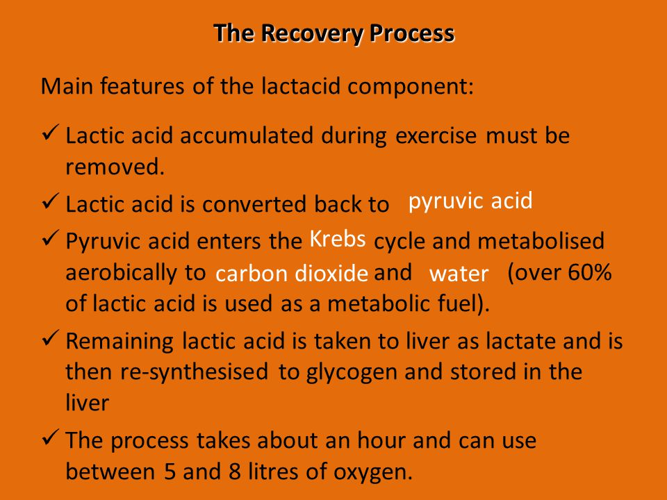 The Recovery Process Main features of the lactacid component: