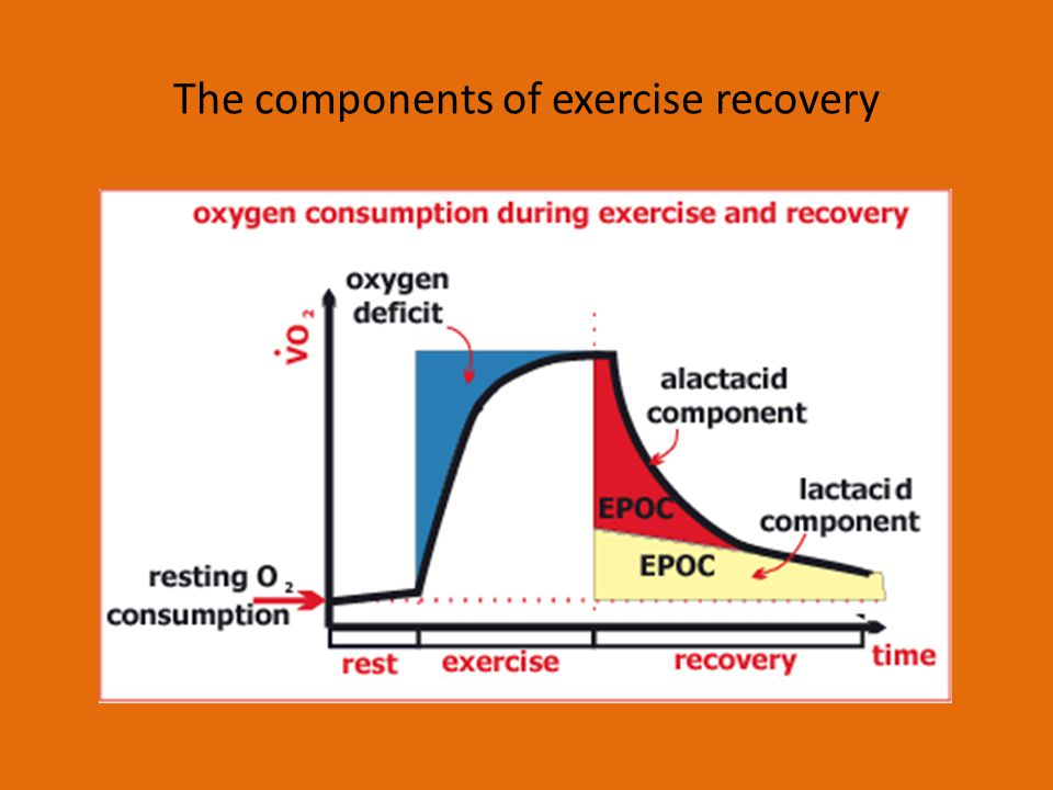 The components of exercise recovery