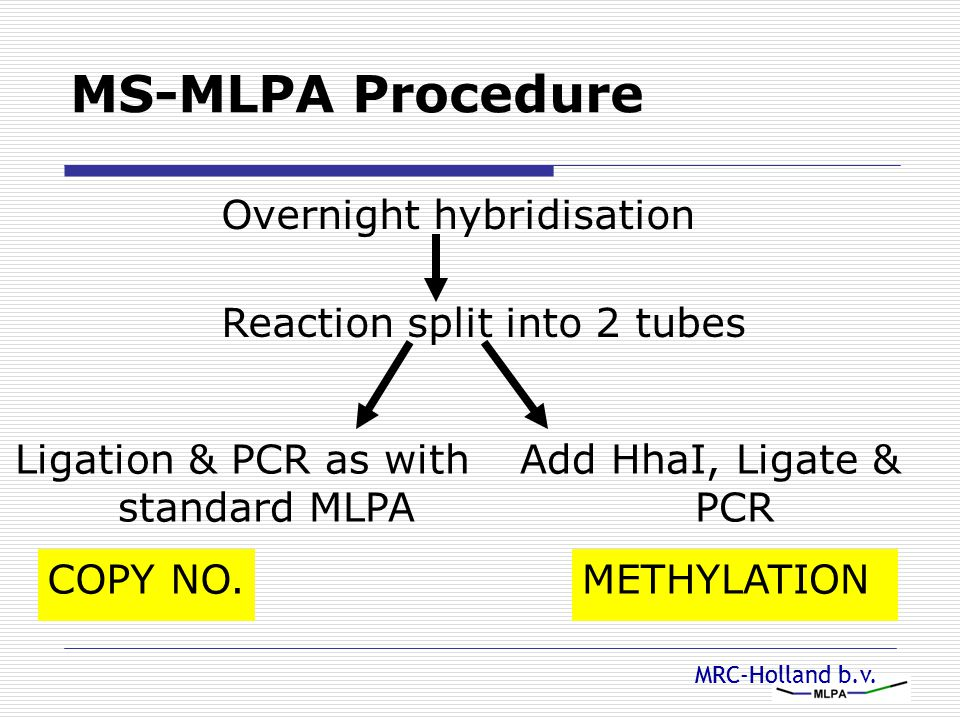 Ligation & PCR as with standard MLPA