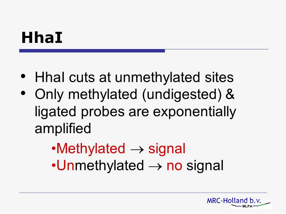 HhaI HhaI cuts at unmethylated sites