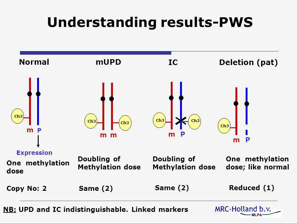 Understanding results-PWS