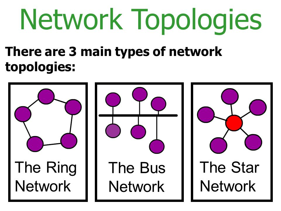 Network Topologies The Ring Network The Bus Network The Star Network
