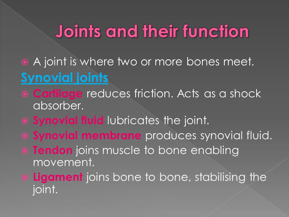 Joints and their function