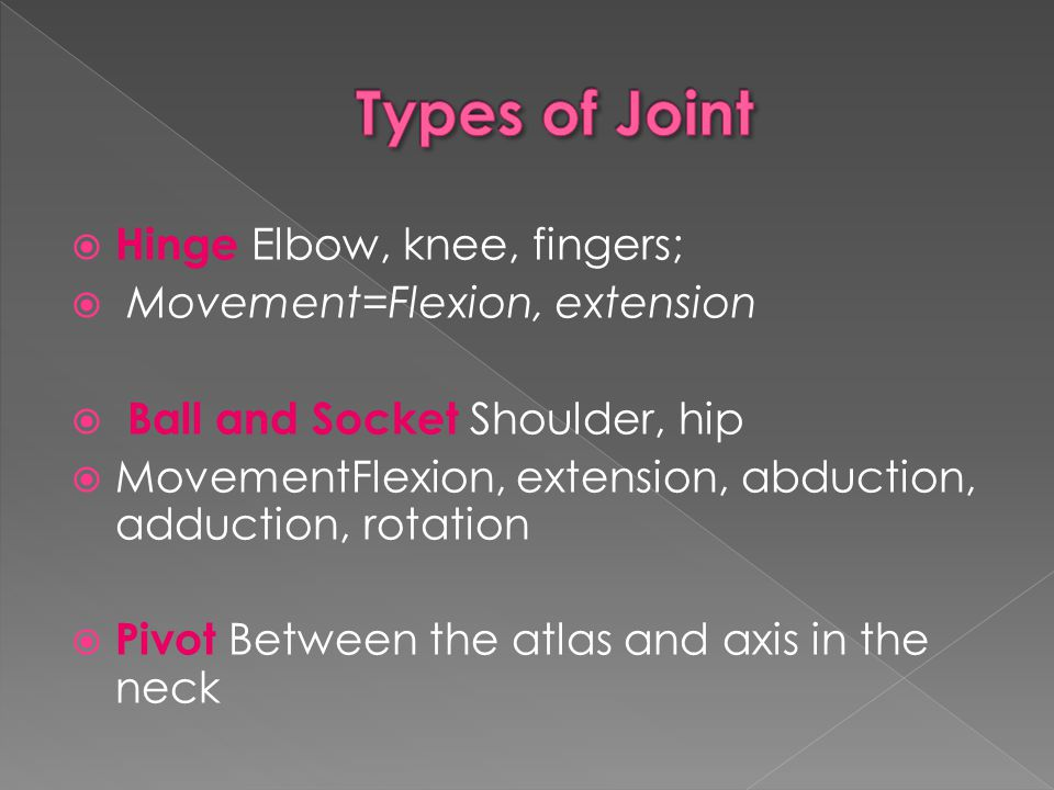 Types of Joint Hinge Elbow, knee, fingers; Movement=Flexion, extension