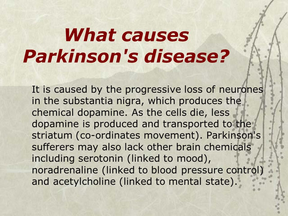 What causes Parkinson s disease