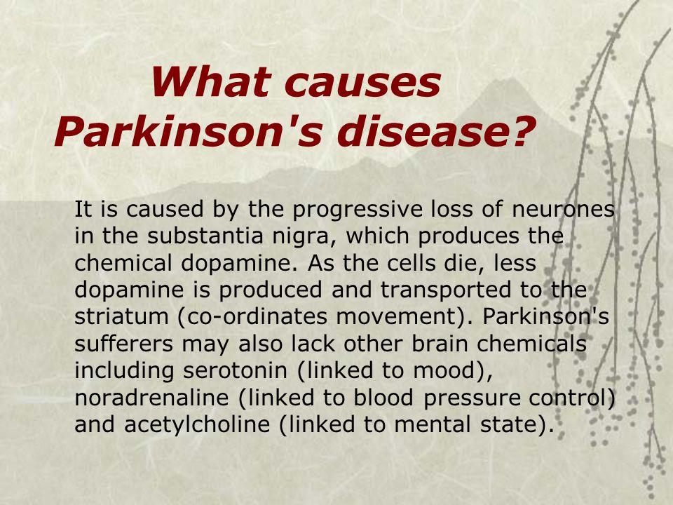 What causes Parkinson s disease