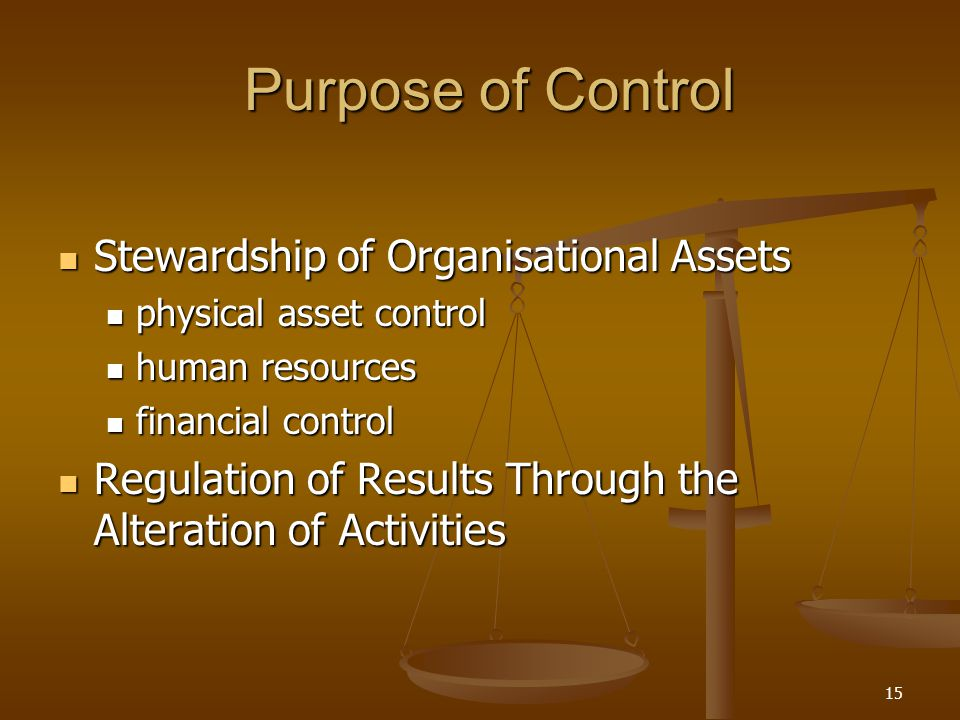 Purpose of Control Stewardship of Organisational Assets