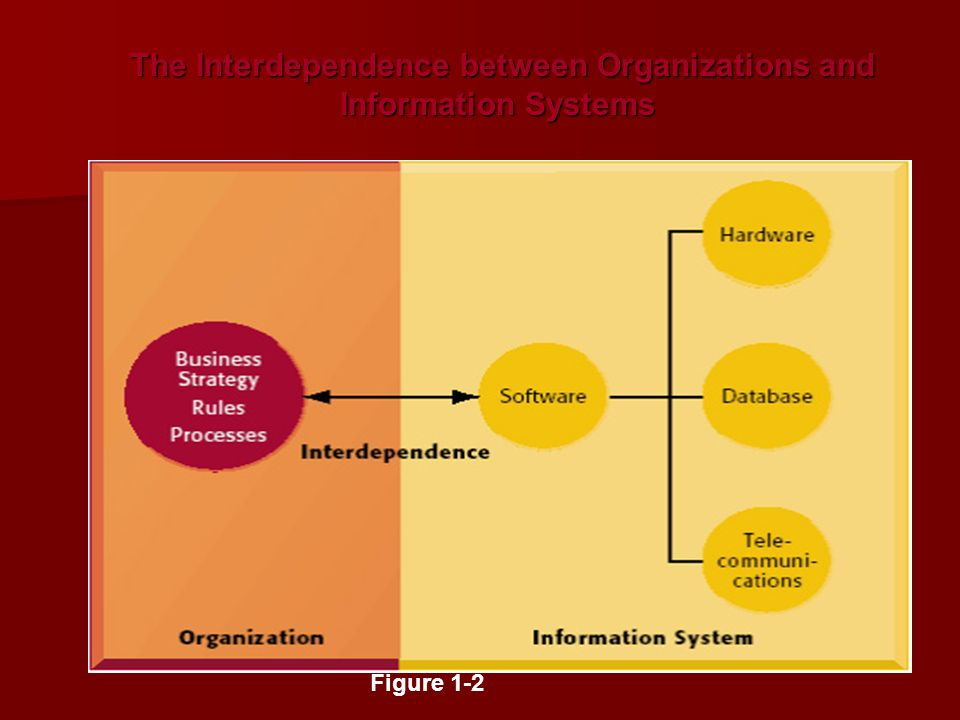The Interdependence between Organizations and