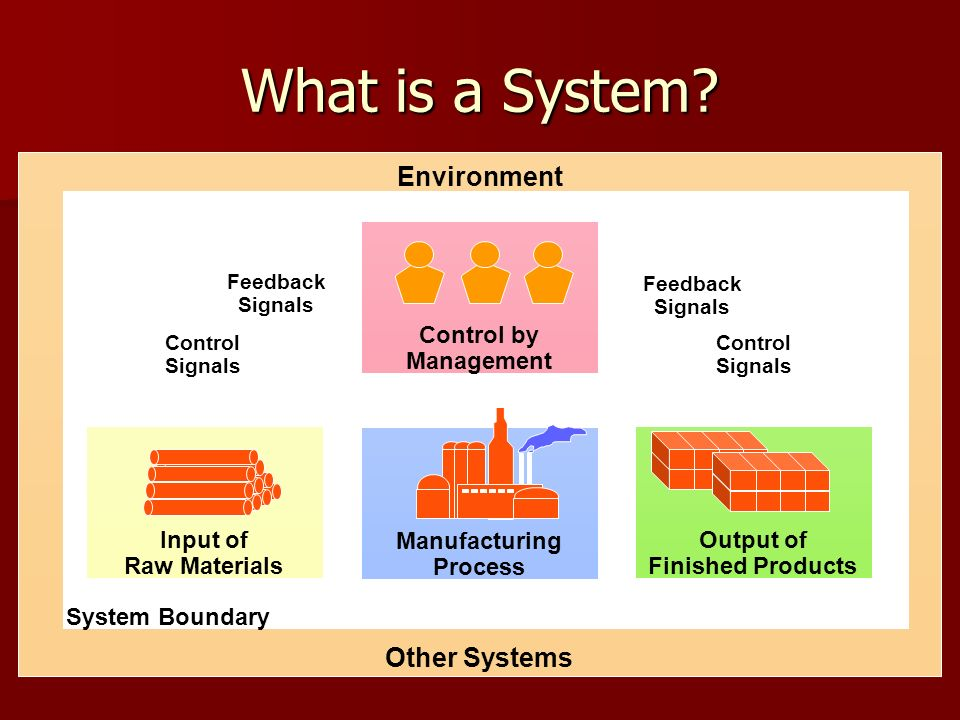 What is a System Environment Other Systems Manufacturing Process