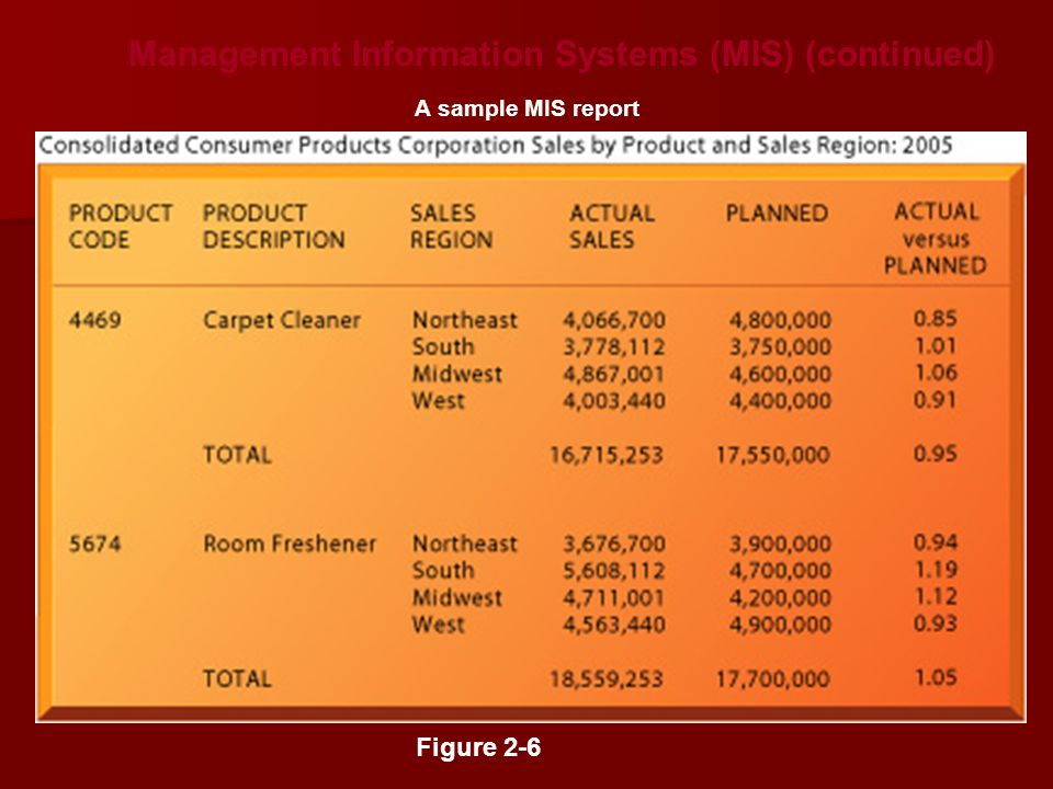 Management Information Systems (MIS) (continued)