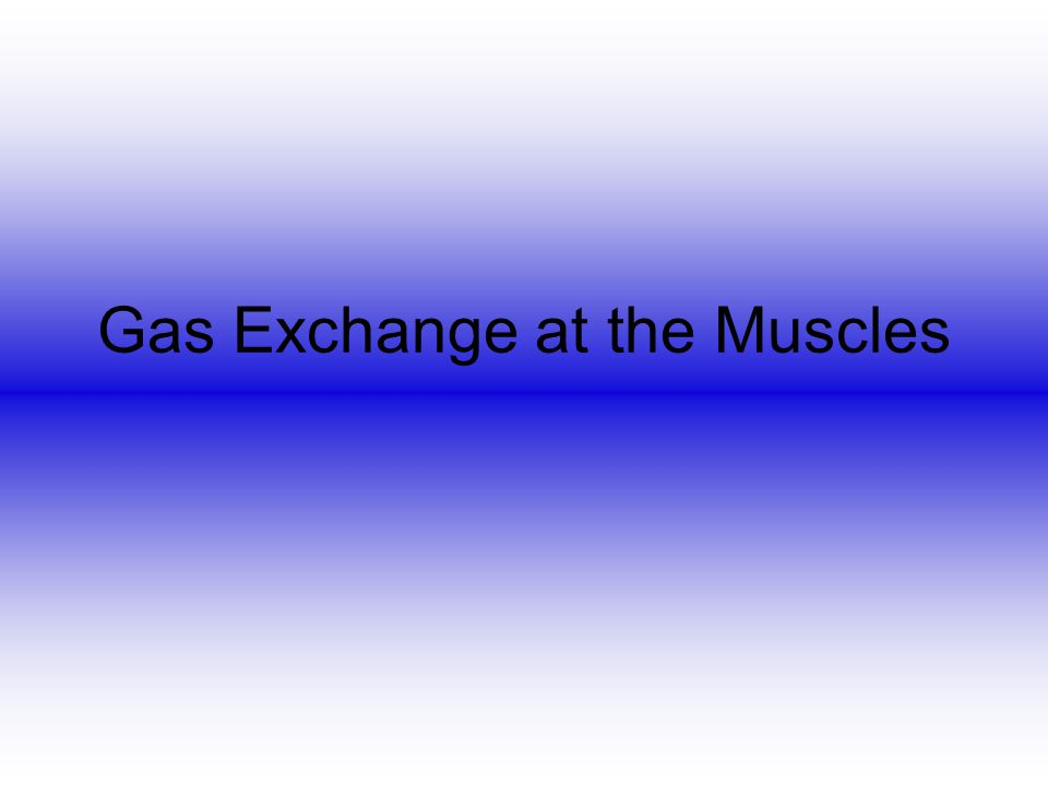 Gas Exchange at the Muscles