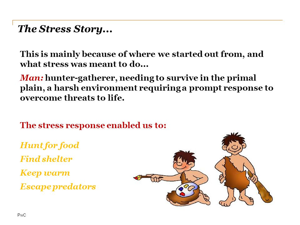 The Stress Story...