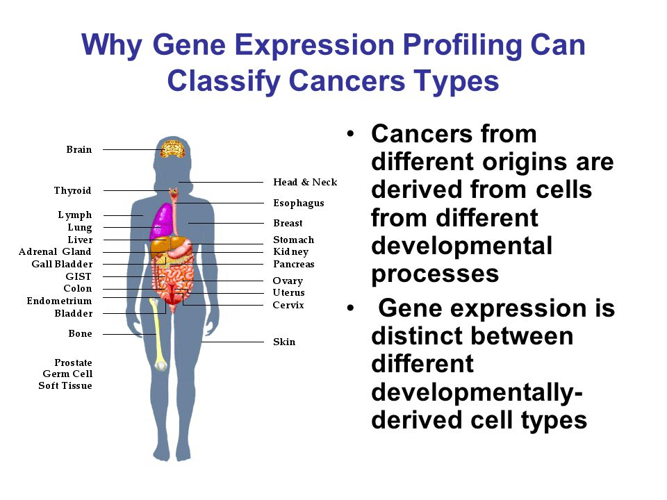 Why Gene Expression Profiling Can Classify Cancers Types