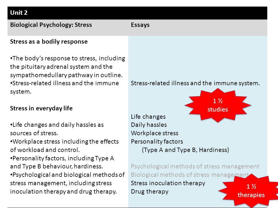 essay on stress working