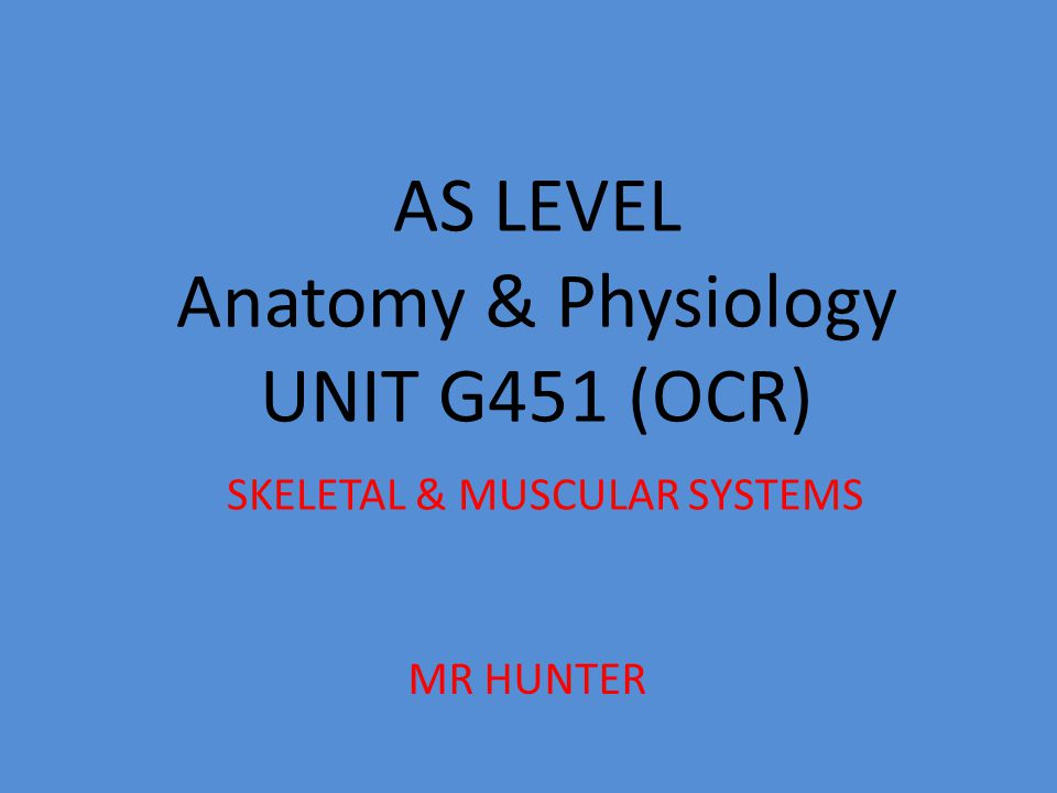 AS LEVEL Anatomy & Physiology UNIT G451 (OCR) SKELETAL & MUSCULAR SYSTEMS
