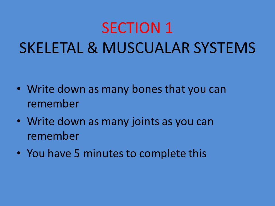 SECTION 1 SKELETAL & MUSCUALAR SYSTEMS