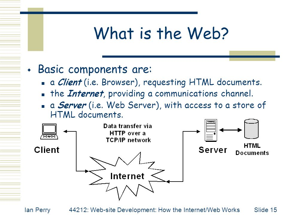 What is the Web Basic components are: