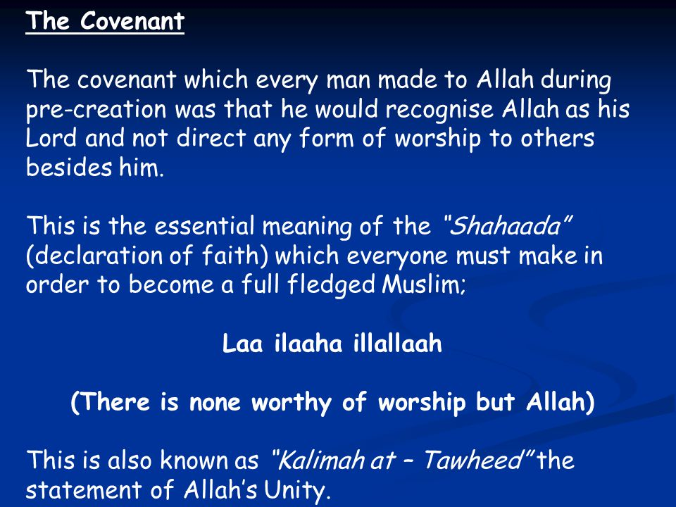 (There is none worthy of worship but Allah)