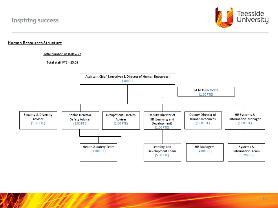 Human Resources Structure
