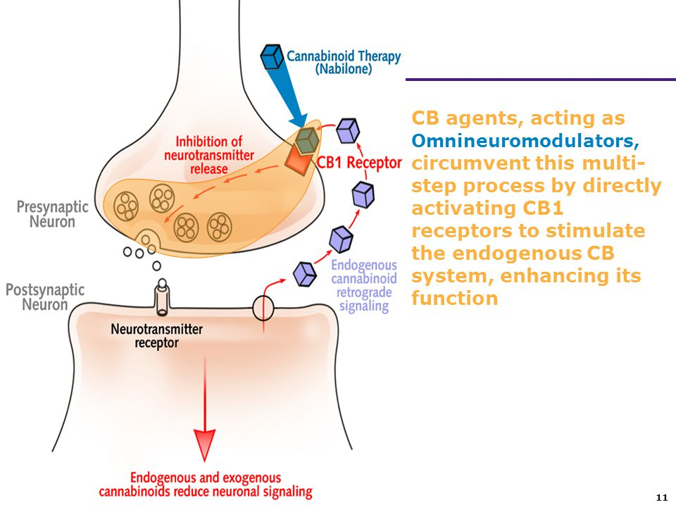CB agents, acting as Omnineuromodulators, circumvent this multi-step process by directly activating CB1 receptors to stimulate the endogenous CB system, enhancing its function