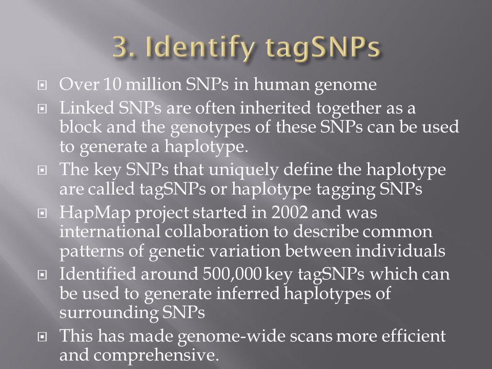 3. Identify tagSNPs Over 10 million SNPs in human genome