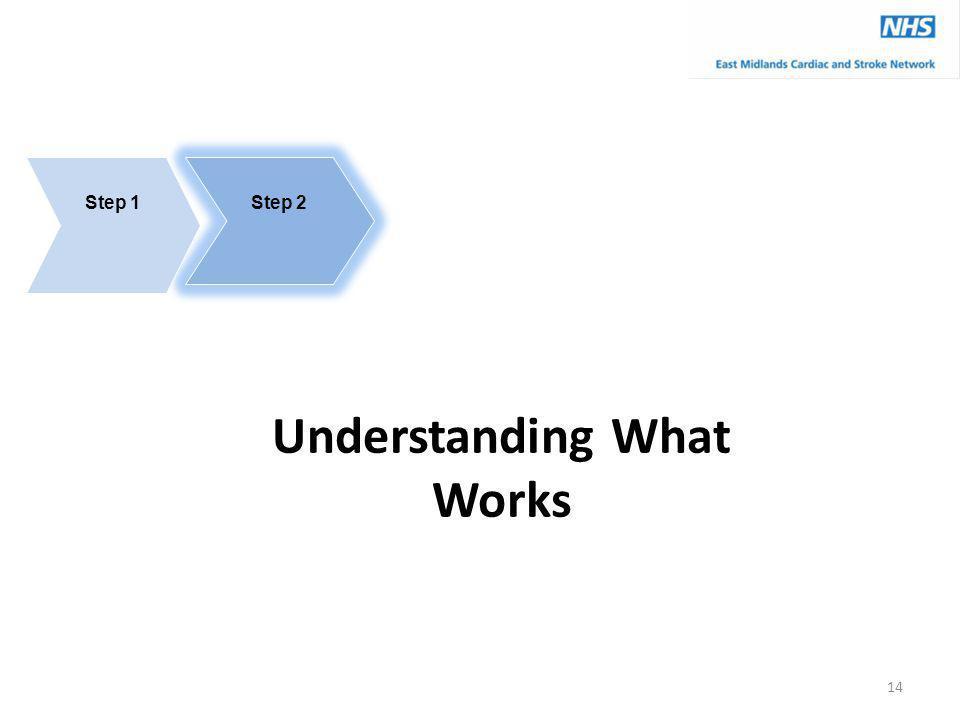Understanding What Works