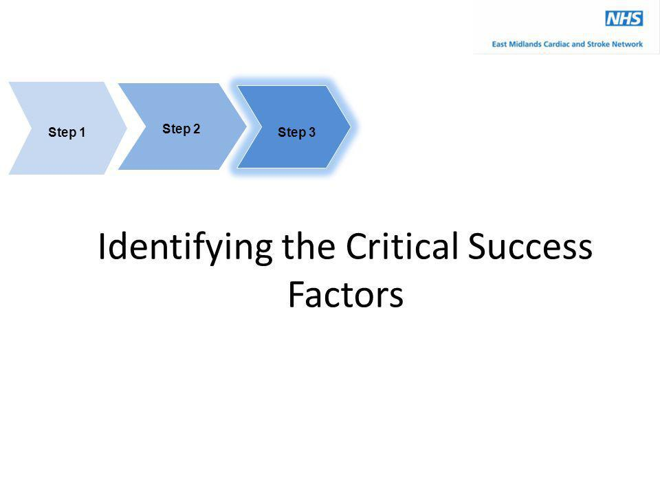 Identifying the Critical Success Factors