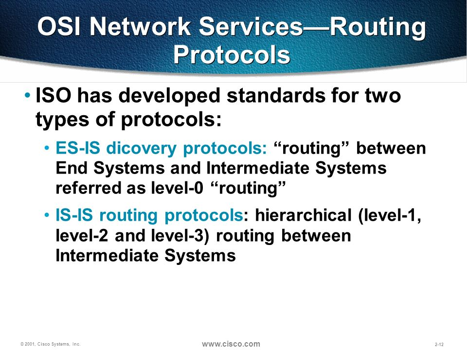 OSI Network Services—Routing Protocols