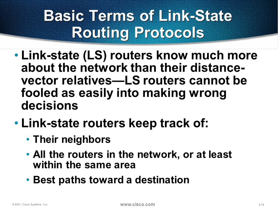 Basic Terms of Link-State Routing Protocols