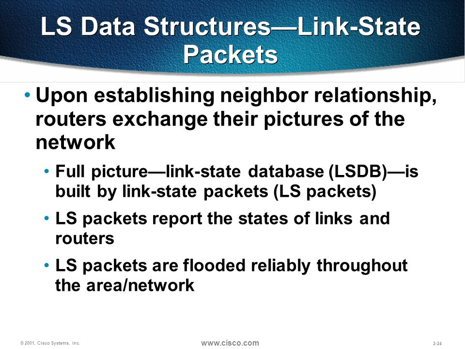 LS Data Structures—Link-State Packets