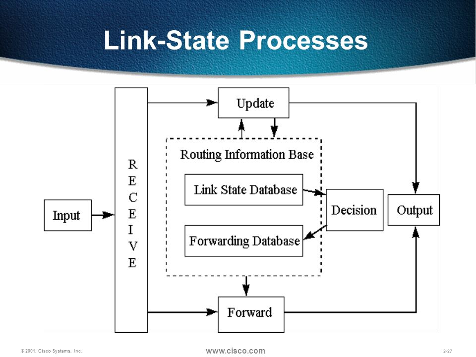 Link-State Processes