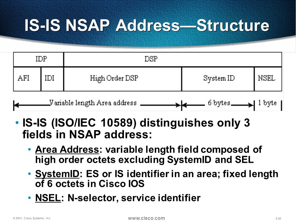 IS-IS NSAP Address—Structure