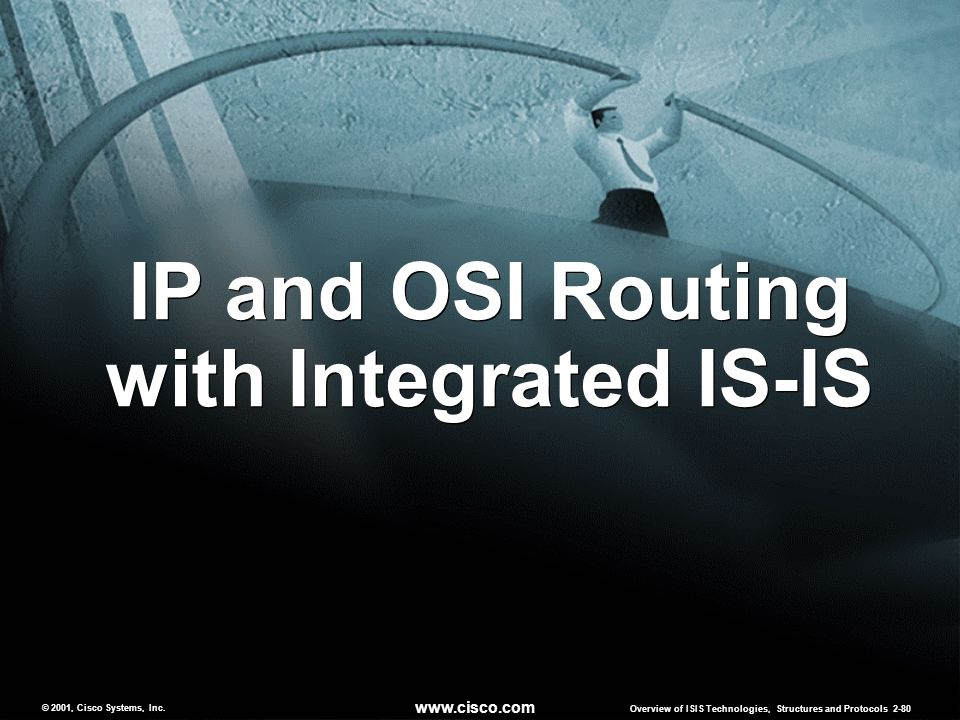 IP and OSI Routing with Integrated IS-IS
