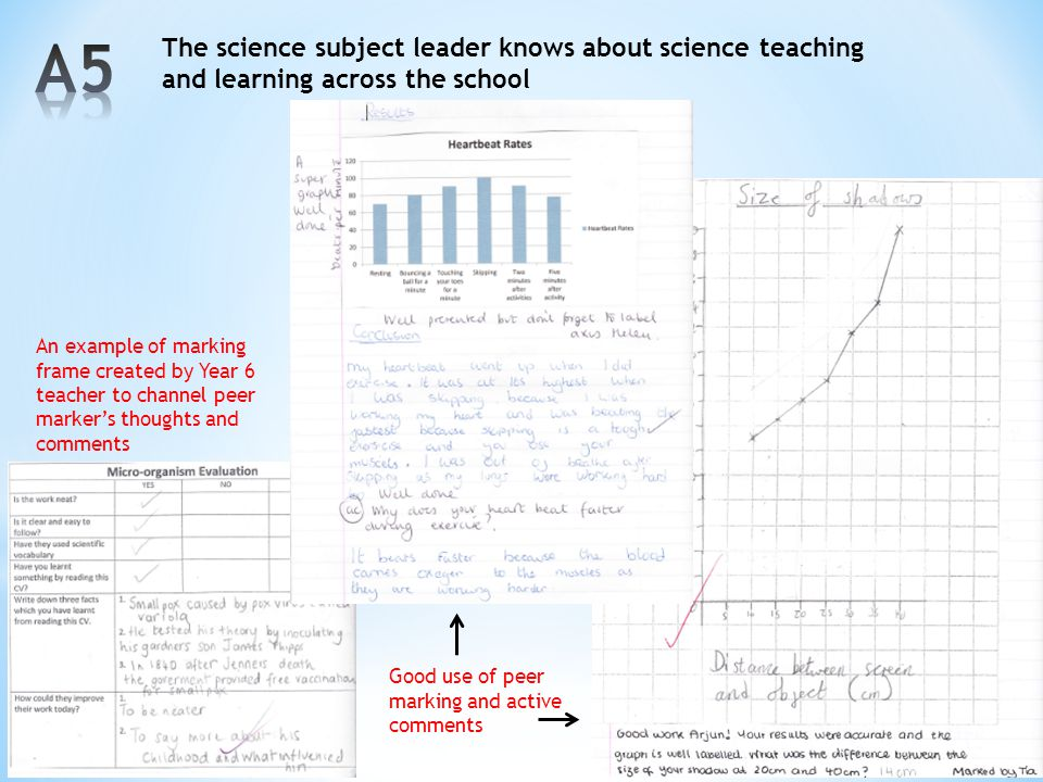 A5 The science subject leader knows about science teaching and learning across the school.