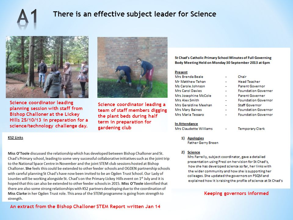 A1 There is an effective subject leader for Science