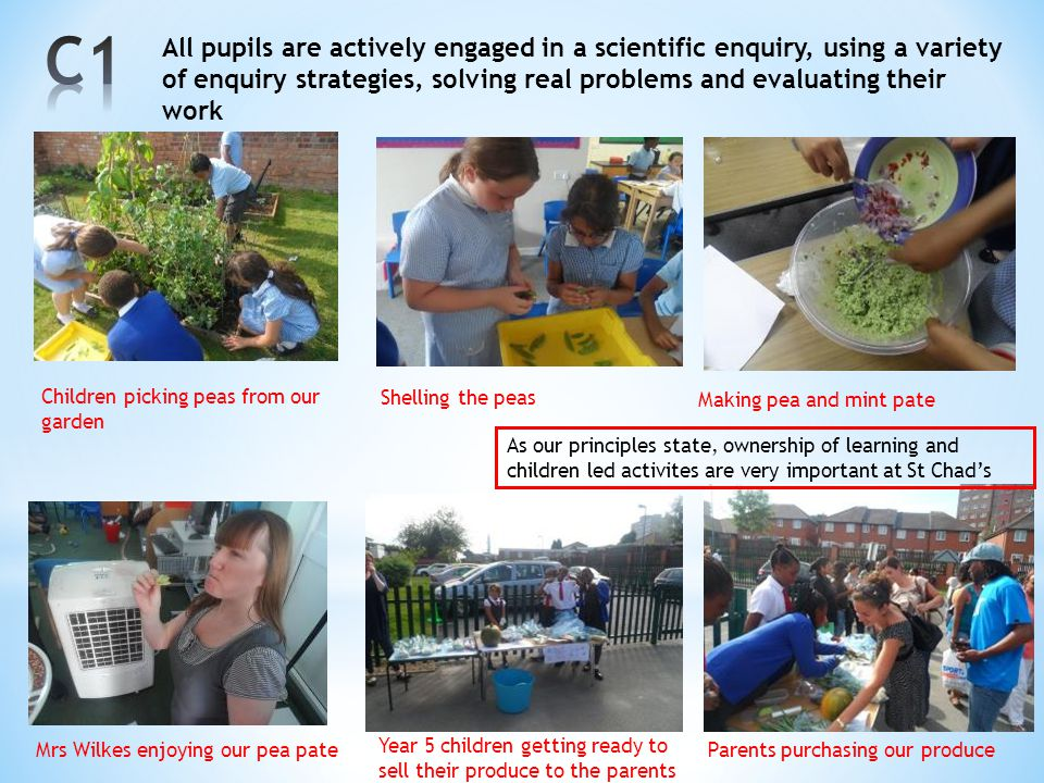 C1 All pupils are actively engaged in a scientific enquiry, using a variety of enquiry strategies, solving real problems and evaluating their work.
