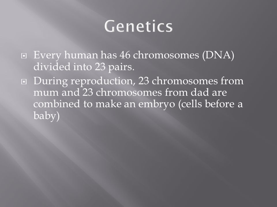 Genetics Every human has 46 chromosomes (DNA) divided into 23 pairs.
